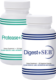 Digest SEB + Protease NK Combo